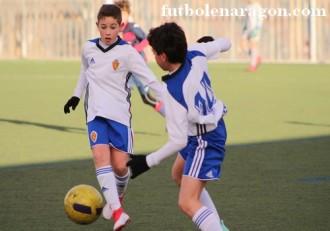 Alevines Zaragoza